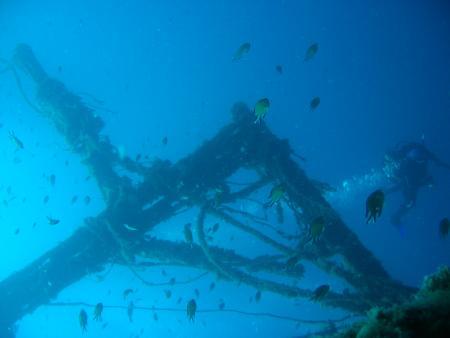 The Dive Shop,Puerto del Carmen,Lanzarote,Kanarische Inseln,Spanien