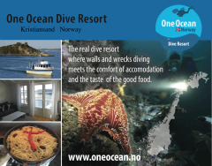 One Ocean Dive Resort,Kristiansand,Norwegen