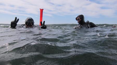 Dive Center Flensburg,Schleswig-Holstein,Deutschland,Schleswig Holstein