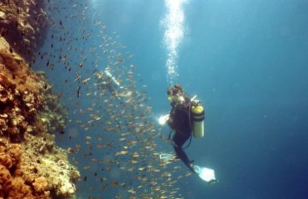 Rainbow Divers,Koh Hai,Andamanensee,Thailand