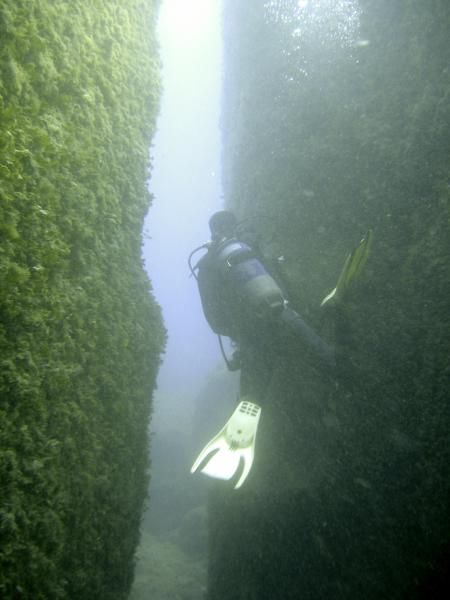 Le Merou / Mehari Diving Center,Tabarka,Tunesien