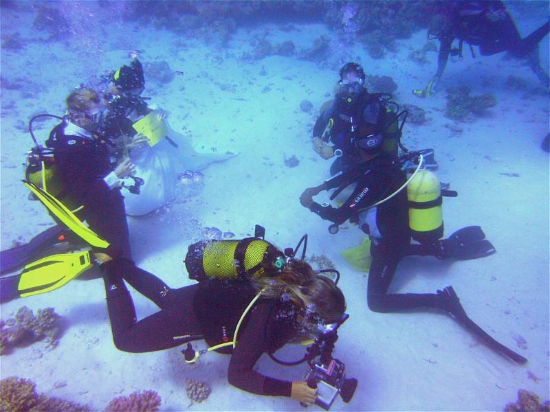 Unterwasserhochzeit Tobia Arbaa, Safaga ORCA - Dive Clubs,Ägypten