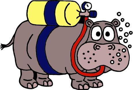 Tauchschule Hippo-Diving, Hippo-Diving, Tauchschule Hippo-Diving, Chemnitz, Deutschland, Sachsen
