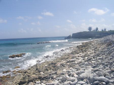 Coco Palm Garden,Casa Oleander,Bonaire,Niederländische Antillen