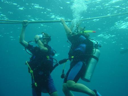 Fun-Dive,Koh Samui,Golf von Thailand,Thailand