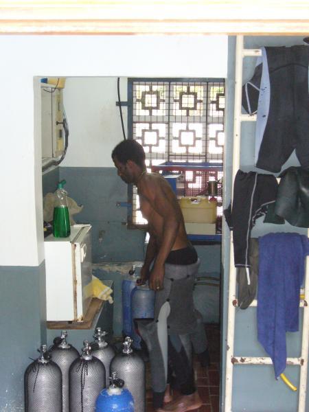 Whitetip Divers,Praslin,Seychellen