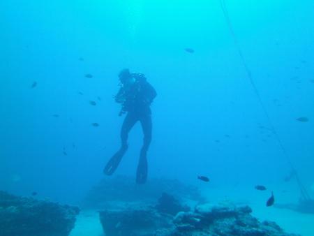Ocean World Esquinzo Beach Fuerteventura,Kanarische Inseln,Spanien