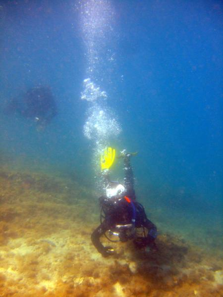 Scuba Adriatic; Holiday Village Zaton (Zadar),Kroatien