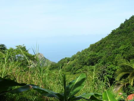 Saba Divers,Saba,Niederländische Antillen