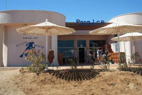 Paradise Diving Center,Makadi Bay,Safaga,Ägypten