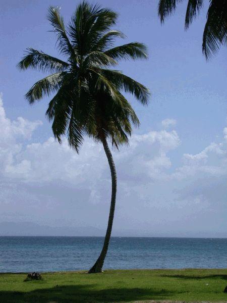 Bucht von Sosua,Dominikanische Republik
