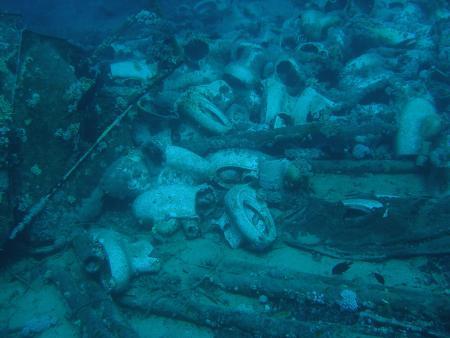 Diving & Discovery,Sharm el Sheikh,Sinai-Süd bis Nabq,Ägypten