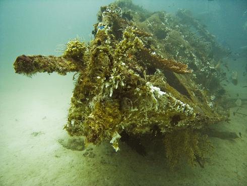 Sabang Wrecks und Almajane, Puerto Galera,Sabang,Philippinen