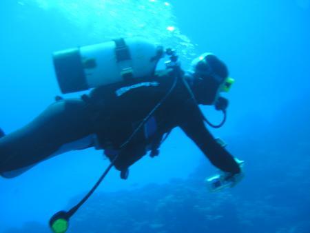 Pioneer-Divers,Marsa Alam,Marsa Alam und südlich,Ägypten