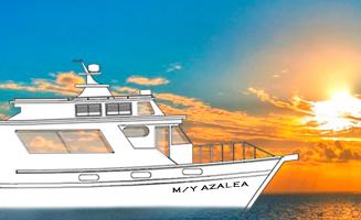 Noch eine Zeichnung aber schon bal Realität, Tauchsafari Philippinen, Tubbataha, Apo Reef, Coron, M/Y Azalea, Philippinen