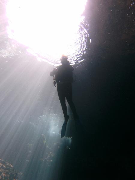 Dive & Fun,Font de Sa Cala,Mallorca,Balearen,Spanien