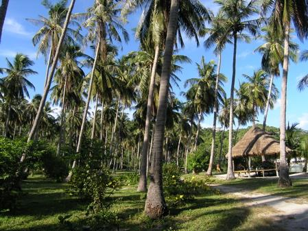 Koh Tao,Thiang Og Bay,Thailand