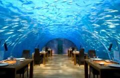 Rangali,SUB AQUA DiveCenter Conrad Maldives,Malediven