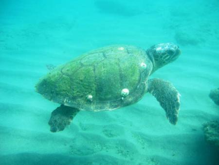 Aqualand,Istron,Kreta,Griechenland