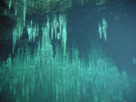 Go Cavern Diving,Puerto Aventuras,Mexiko