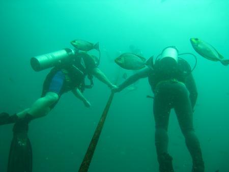 Samui Asia Divers,Koh Samui,Golf von Thailand,Thailand