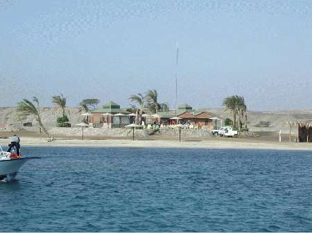 Shams Alam - Wadi Gimal Diving Center,Marsa Alam,Marsa Alam und südlich,Ägypten