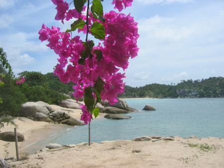 Koh Tao,Thailand