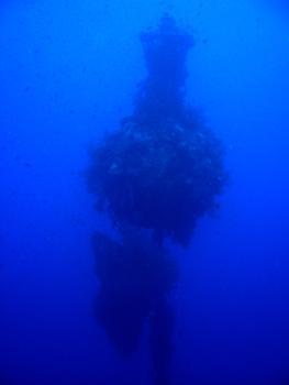 Scuba College - Diving Camp Nuweiba,Sinai-Nord ab Dahab,Ägypten