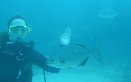 Scuba-Fun,Key Largo,Florida,USA