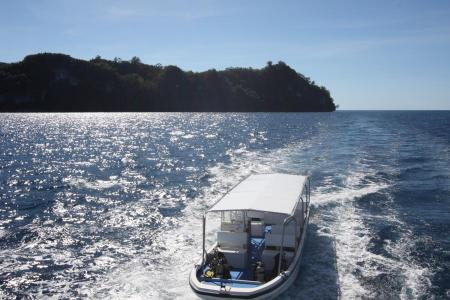 Ocean Hunter III,Palau