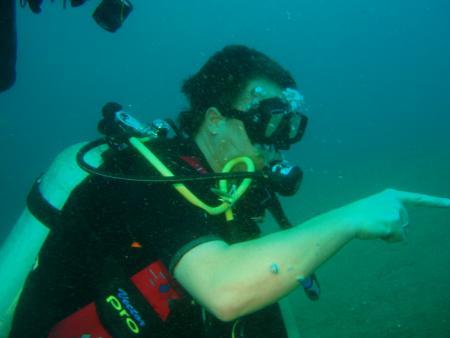 Atlantis Dumaguete,Philippinen