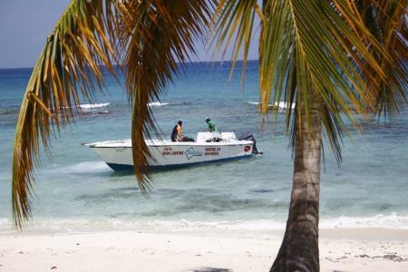 Scubafun Bayahibe,Dominikanische Republik