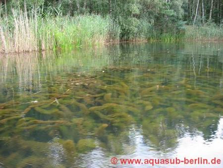 Aquasub-Berlin,Sachsen-Anhalt,Deutschland,Sachsen Anhalt