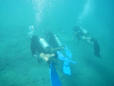 Dive in,El Quseir bis Port Ghalib,Ägypten