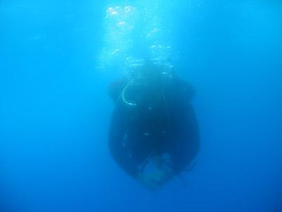 M/Y Sub Aqua I,Ägypten