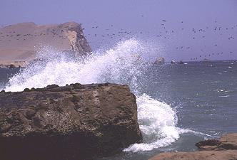 Playa Mendieta,Paracas - Nördliche Felsnadeln,Paracas - Zentralinseln,Paracas - Seelöweninsel,Paracas - Kelpwald,Peru