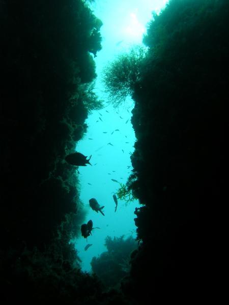 Cala Santanyí Diving Center (Paco´s Diving),Mallorca,Balearen,Spanien