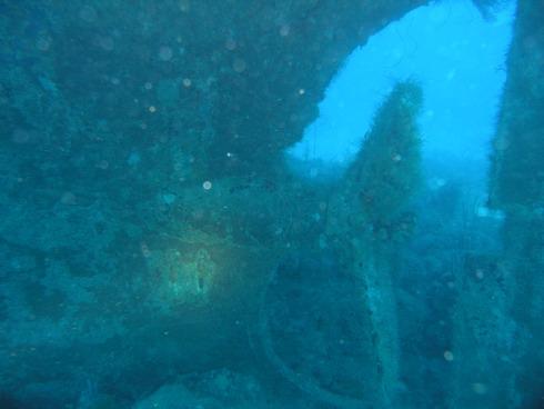 Shakem Wreck, Grand Ansen, Shakem Wreck,Grenada