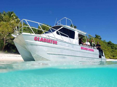 Beluga Dive Vava'u, Tonga