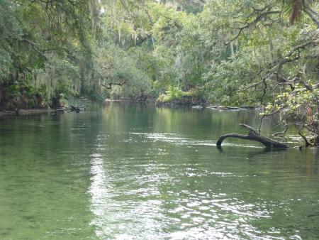 Blue Spring State Park,Orange City,Florida,USA