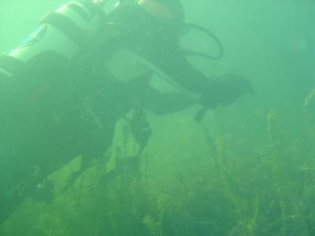 Dive In Essen Tauchsport GmbH & Co. Kg,Essen,Nordrhein-Westfalen,Deutschland