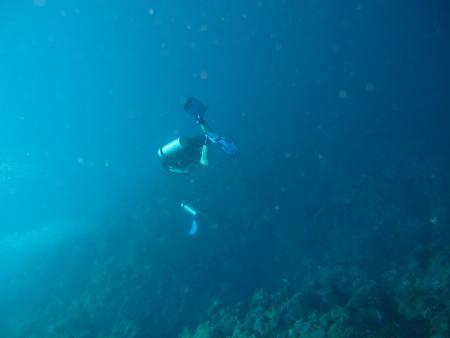 Mamaling Souldiving Bunaken,Sulawesi,Indonesien