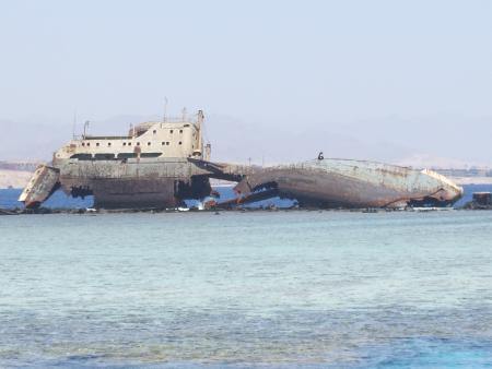 Scubadreamer,Sharm el Sheikh,Sinai-Süd bis Nabq,Ägypten