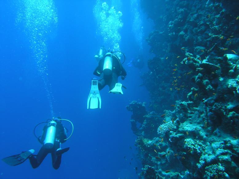 Ras Nasrani + Shark Reef, Ras Nasrani (Sharm El Sheikh),Ägypten