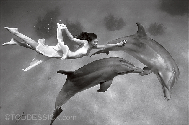 Nacktmodel schwimmt mit zwei Delfinen - Todd Essick - Beginnings
