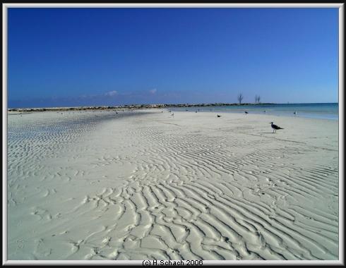 Grand Bahama, Grand Bahama,Bahamas