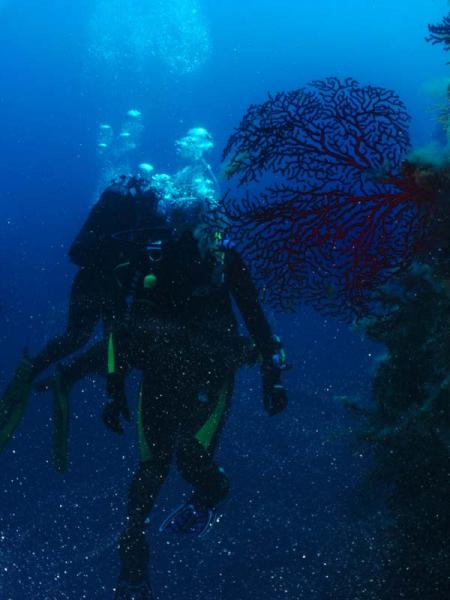Pelagos Diving Club,Porto Ercole (Toskana),Italien