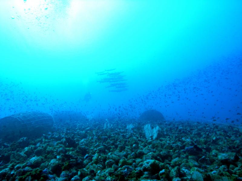 Malukku, Malukku,Indonesien