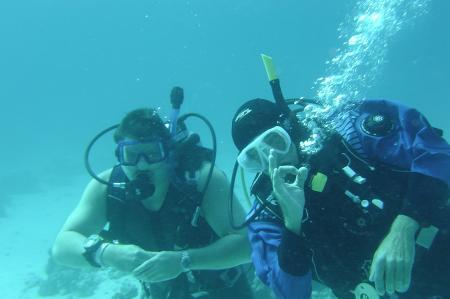 Jasmin Diving Sports Center,Grand Seas Resort Hostmark - Hurghada,Hurghada,Ägypten