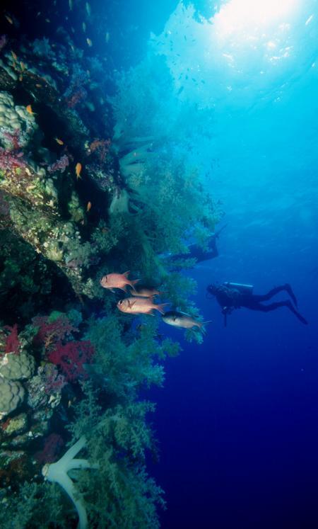 M/Y Blue Seas,Ägypten